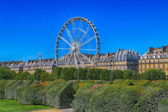 Jardín de las Tullerías paris
